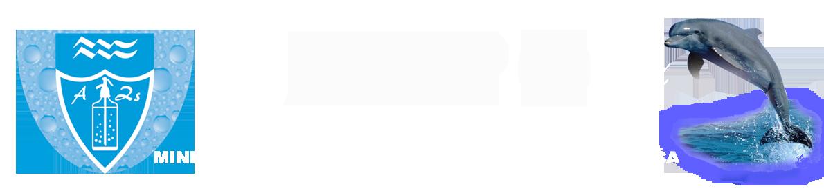 Fejléc szerb